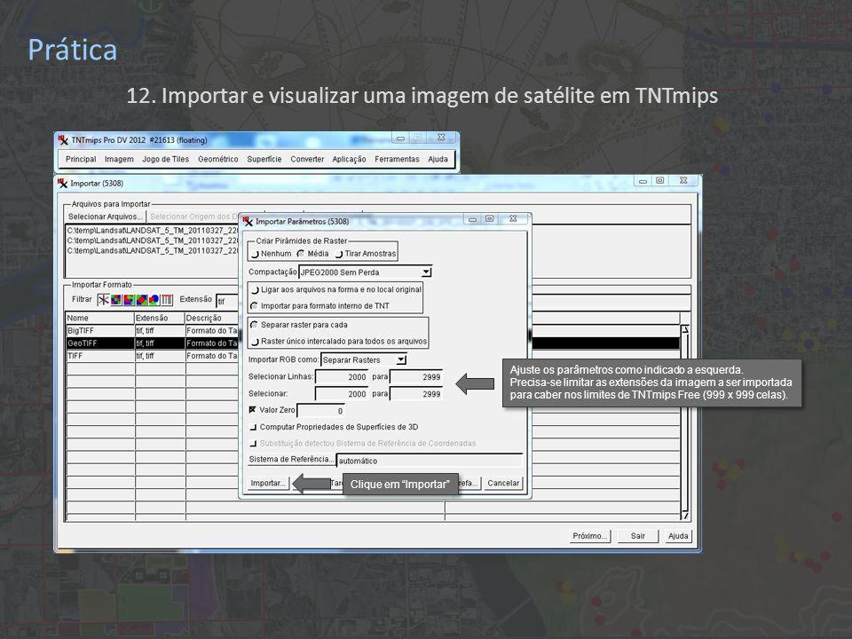 12. Importar e visualizar uma imagem de satélite em TNTmips Prática Ajuste os parâmetros como indicado a esquerda. Precisa-se limitar as extensões da