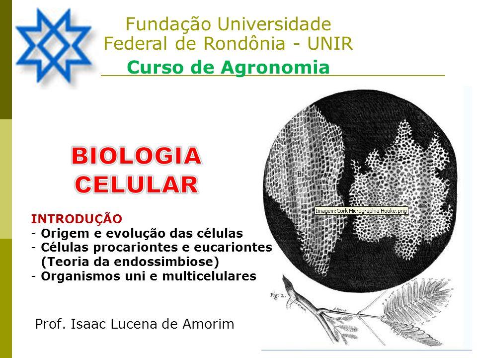 Fundação Universidade Federal de Rondônia - UNIR Curso de Agronomia Prof. Isaac Lucena de Amorim INTRODUÇÃO -Origem e evolução das células -Células pr