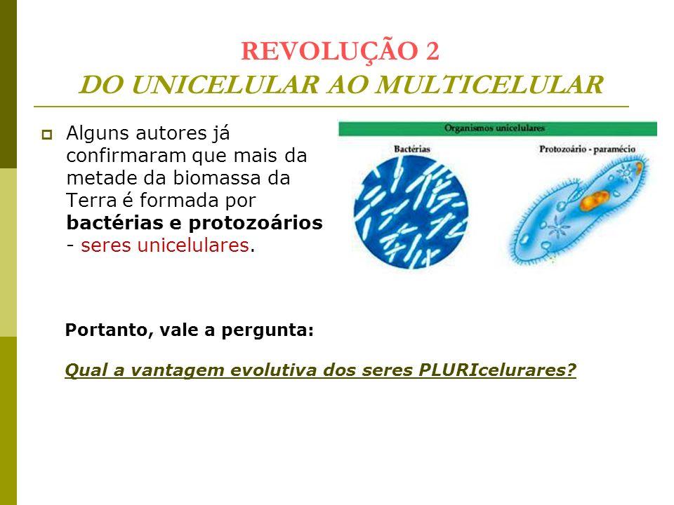 REVOLUÇÃO 2 DO UNICELULAR AO MULTICELULAR Alguns autores já confirmaram que mais da metade da biomassa da Terra é formada por bactérias e protozoários