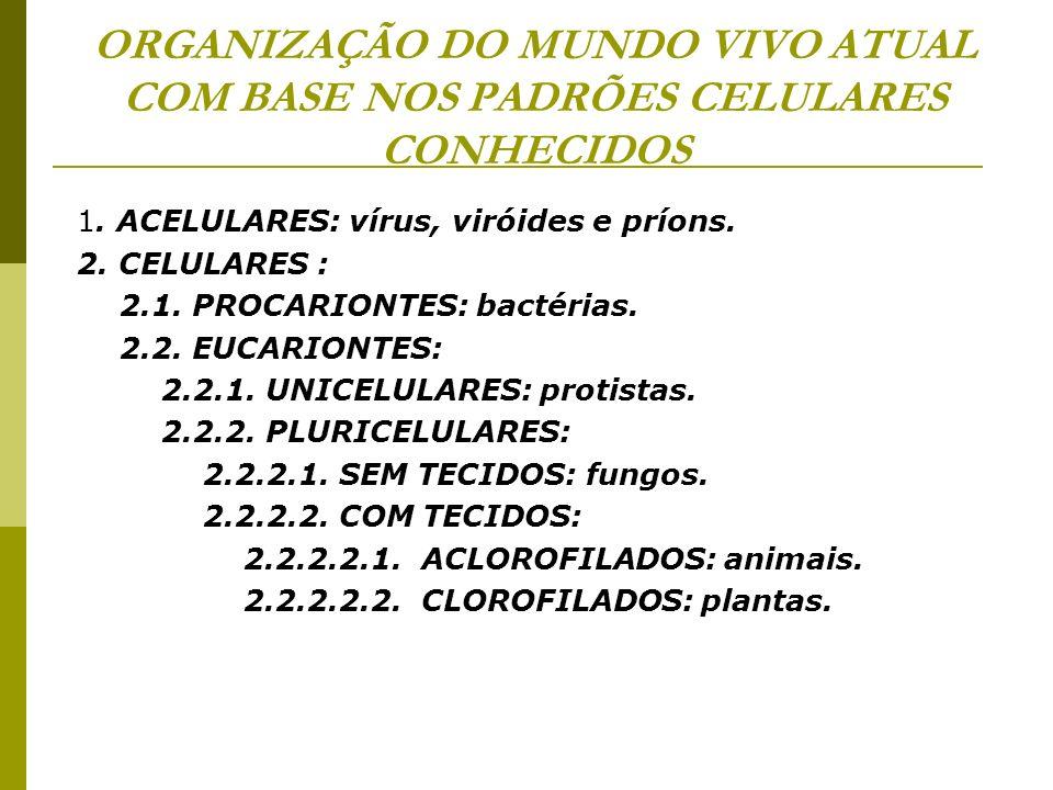 ORGANIZAÇÃO DO MUNDO VIVO ATUAL COM BASE NOS PADRÕES CELULARES CONHECIDOS 1. ACELULARES: vírus, viróides e príons. 2. CELULARES : 2.1. PROCARIONTES: b