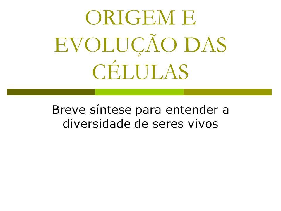 ORIGEM E EVOLUÇÃO DAS CÉLULAS Breve síntese para entender a diversidade de seres vivos