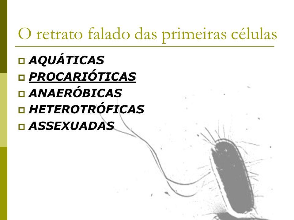 O retrato falado das primeiras células AQUÁTICAS PROCARIÓTICAS ANAERÓBICAS HETEROTRÓFICAS ASSEXUADAS
