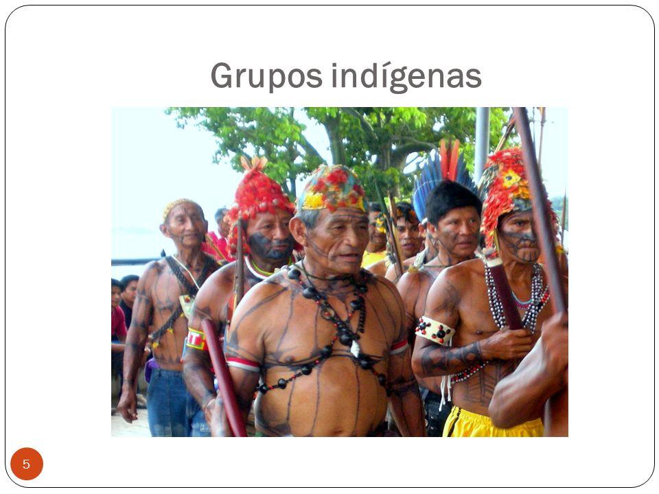 Grupos indígenas 5