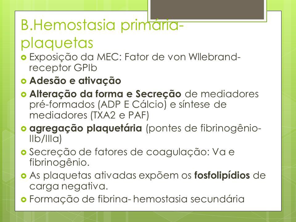 B.Hemostasia primária- plaquetas Exposição da MEC: Fator de von Wllebrand- receptor GPIb Adesão e ativação Alteração da forma e Secreção de mediadores