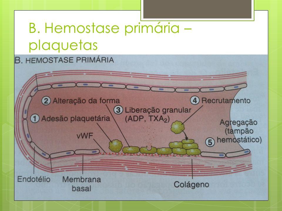 B. Hemostase primária – plaquetas
