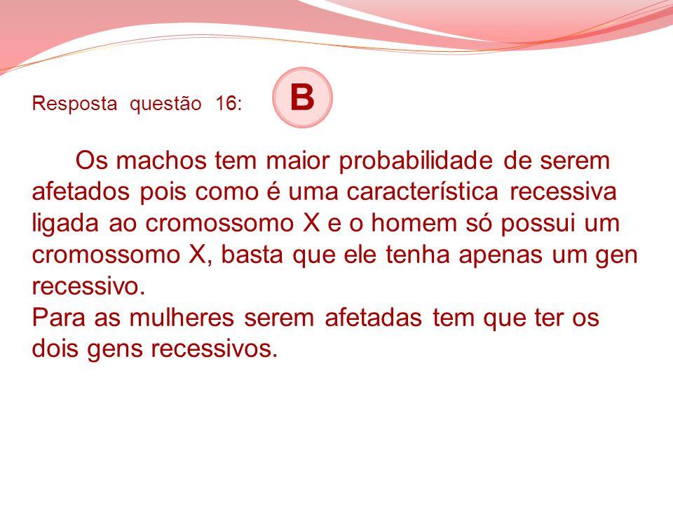 Resposta questão 16: B Os machos tem maior probabilidade de serem afetados pois como é uma característica recessiva ligada ao cromossomo X e o homem s