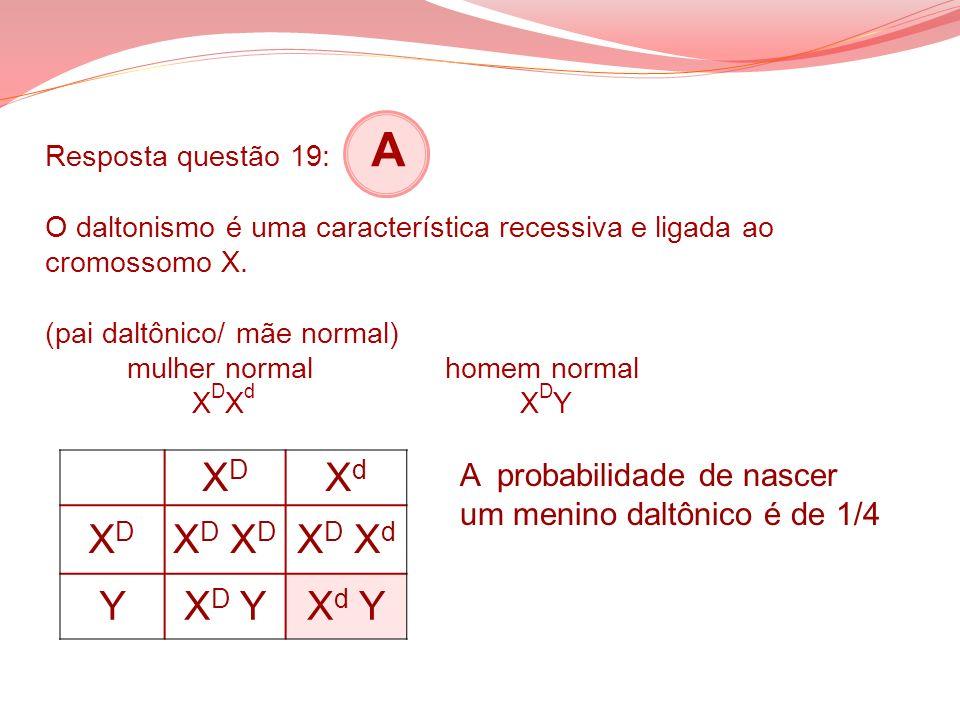 Resposta questão 19: A O daltonismo é uma característica recessiva e ligada ao cromossomo X. (pai daltônico/ mãe normal) mulher normal homem normal X