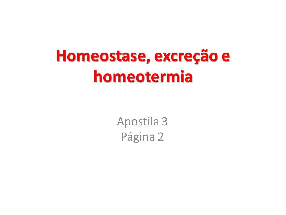 Homeostase, excreção e homeotermia Apostila 3 Página 2