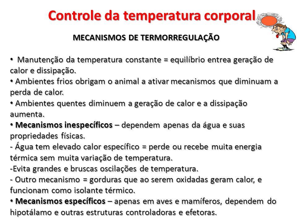 Controle da temperatura corporal MECANISMOS DE TERMORREGULAÇÃO Manutenção da temperatura constante = equilíbrio entrea geração de calor e dissipação.