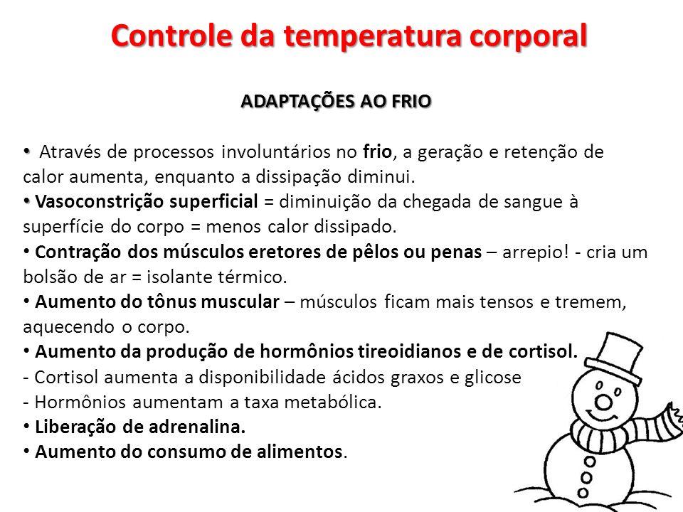 Controle da temperatura corporal ADAPTAÇÕES AO FRIO Através de processos involuntários no frio, a geração e retenção de calor aumenta, enquanto a diss