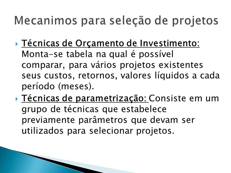 Técnicas de Orçamento de Investimento: Monta-se tabela na qual é possível comparar, para vários projetos existentes seus custos, retornos, valores líquidos a cada período (meses).