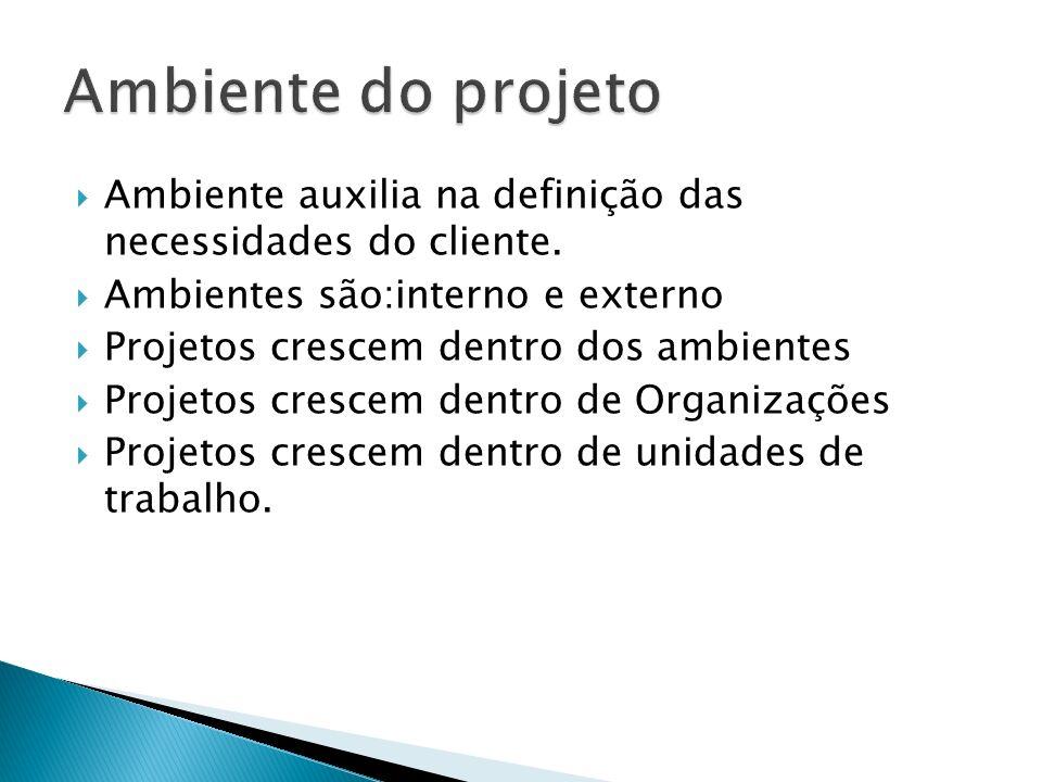 Ambiente auxilia na definição das necessidades do cliente. Ambientes são:interno e externo Projetos crescem dentro dos ambientes Projetos crescem dent