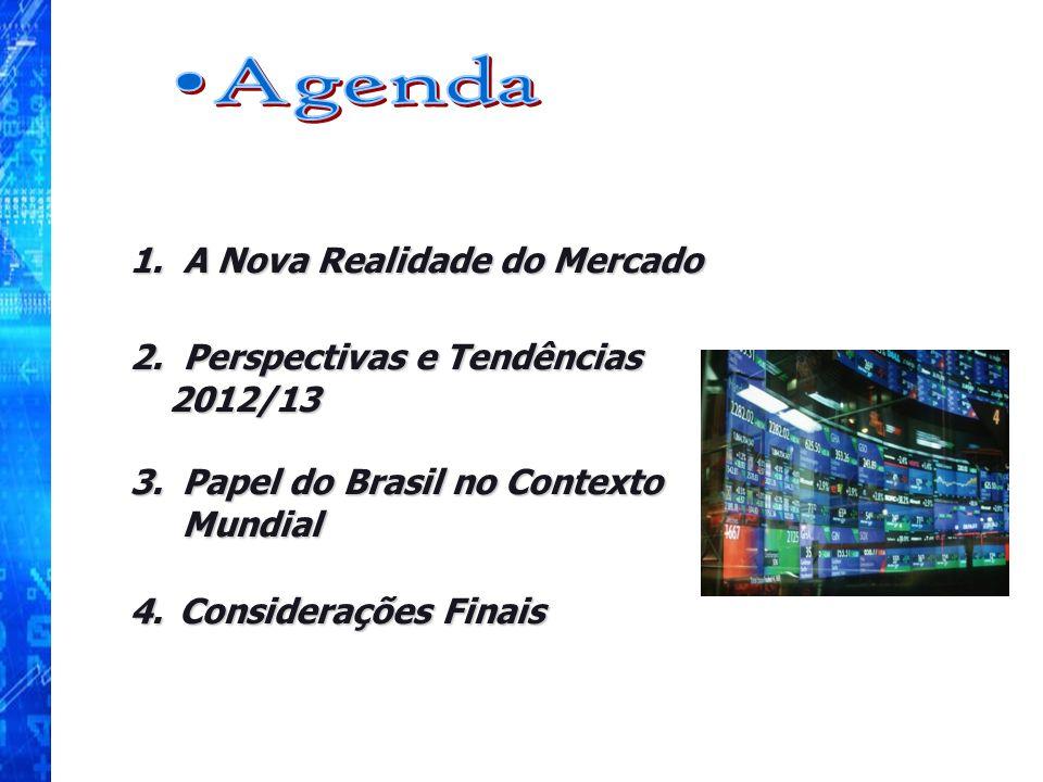 1. A Nova Realidade do Mercado 2. Perspectivas e Tendências 2012/13 3.Papel do Brasil no Contexto Mundial 4. Considerações Finais