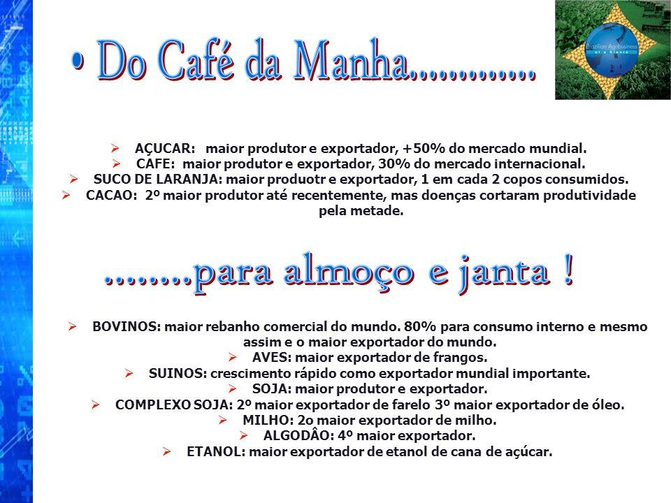 AÇUCAR: maior produtor e exportador, +50% do mercado mundial. CAFE: maior produtor e exportador, 30% do mercado internacional. SUCO DE LARANJA: maior