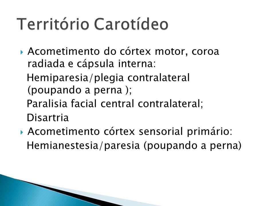 Acometimento do córtex motor, coroa radiada e cápsula interna: Hemiparesia/plegia contralateral (poupando a perna ); Paralisia facial central contralateral; Disartria Acometimento córtex sensorial primário: Hemianestesia/paresia (poupando a perna)