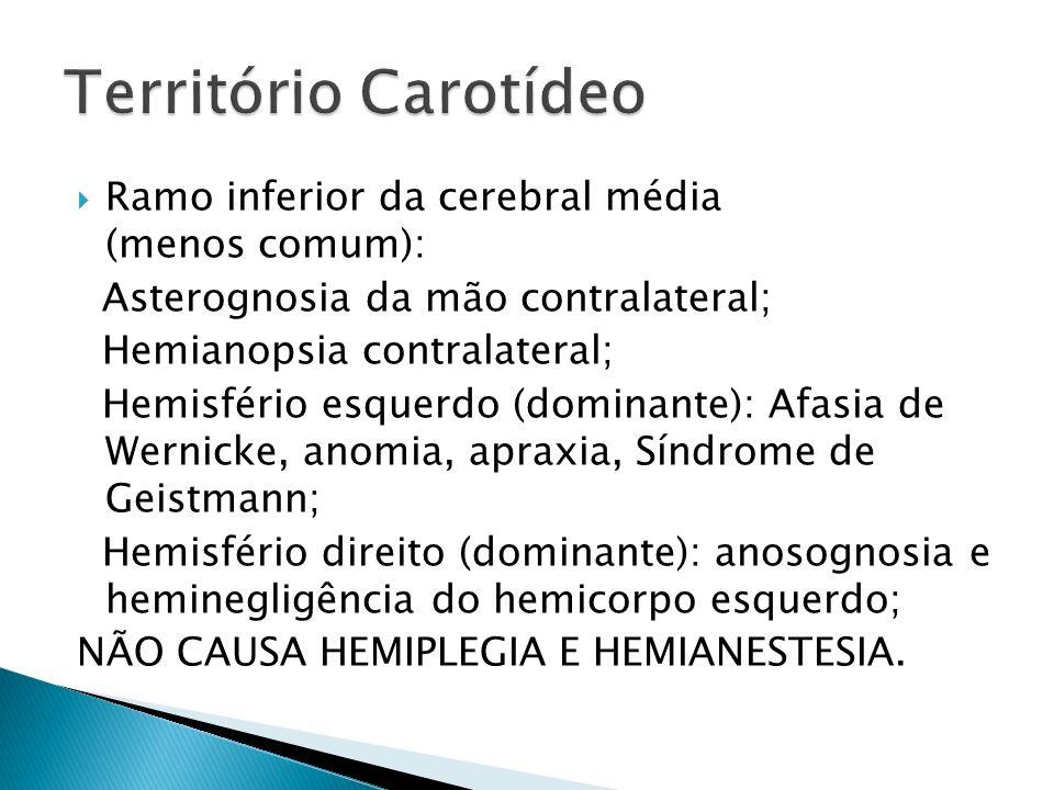 Ramo inferior da cerebral média (menos comum): Asterognosia da mão contralateral; Hemianopsia contralateral; Hemisfério esquerdo (dominante): Afasia de Wernicke, anomia, apraxia, Síndrome de Geistmann; Hemisfério direito (dominante): anosognosia e heminegligência do hemicorpo esquerdo; NÃO CAUSA HEMIPLEGIA E HEMIANESTESIA.
