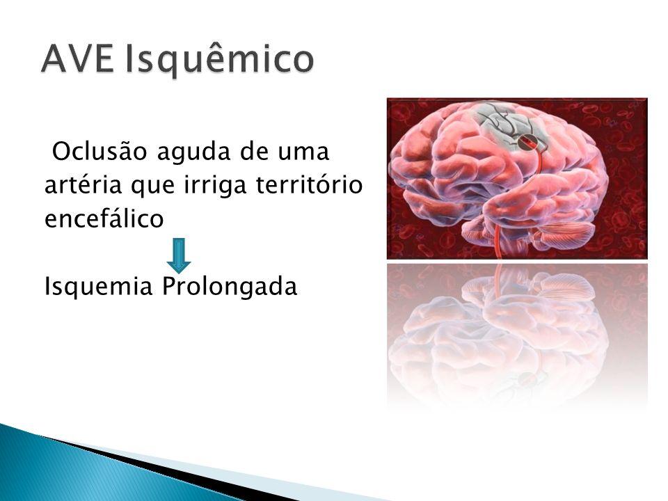 Oclusão aguda de uma artéria que irriga território encefálico Isquemia Prolongada