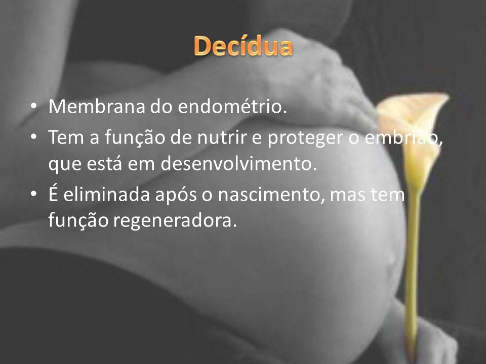 Membrana do endométrio. Tem a função de nutrir e proteger o embrião, que está em desenvolvimento. É eliminada após o nascimento, mas tem função regene