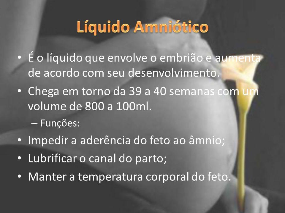 É o líquido que envolve o embrião e aumenta de acordo com seu desenvolvimento. Chega em torno da 39 a 40 semanas com um volume de 800 a 100ml. – Funçõ
