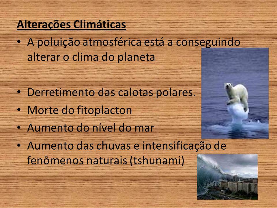 Alterações Climáticas A poluição atmosférica está a conseguindo alterar o clima do planeta Derretimento das calotas polares.