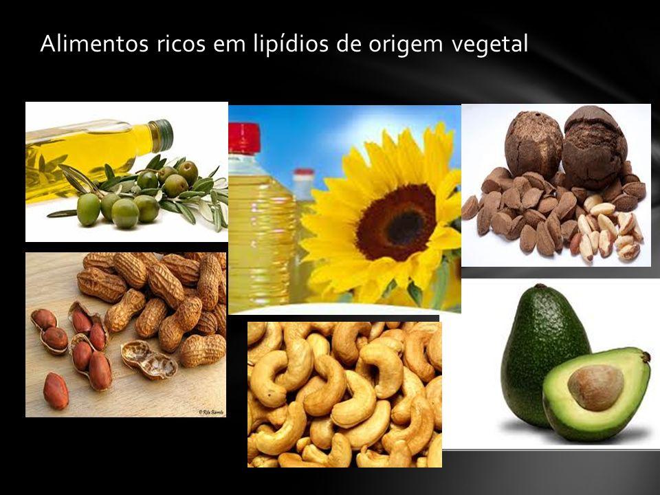 Alimentos ricos em lipídios de origem vegetal