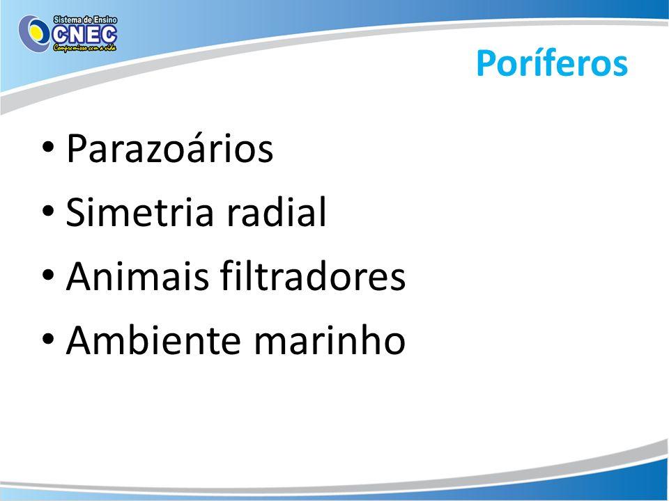 Poríferos Parazoários Simetria radial Animais filtradores Ambiente marinho