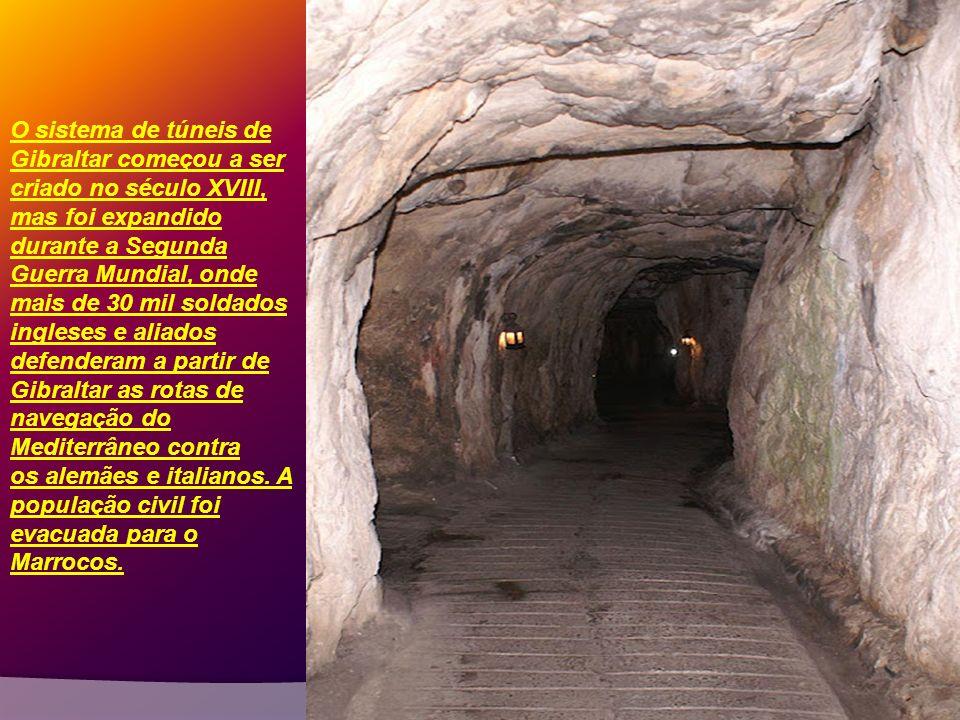 Ao longo dos séculos mais de uma centena de cavernas foram exploradas no Rochedo de Gibraltar. Foram encontradas importantes artefatos que comprovaram