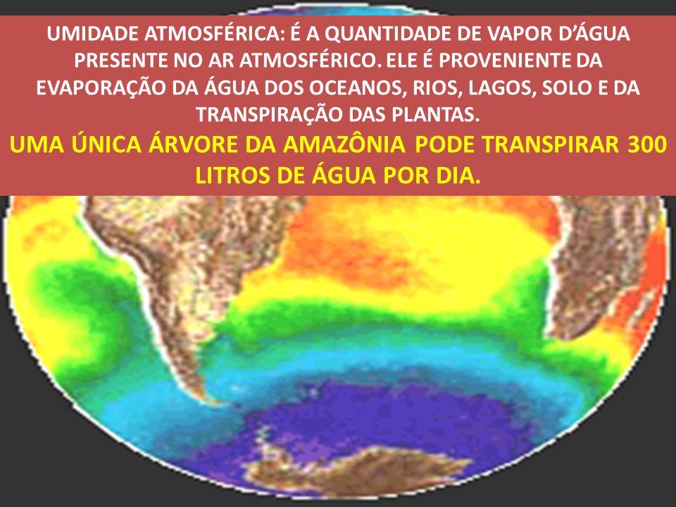 UMIDADE ATMOSFÉRICA: É A QUANTIDADE DE VAPOR DÁGUA PRESENTE NO AR ATMOSFÉRICO. ELE É PROVENIENTE DA EVAPORAÇÃO DA ÁGUA DOS OCEANOS, RIOS, LAGOS, SOLO