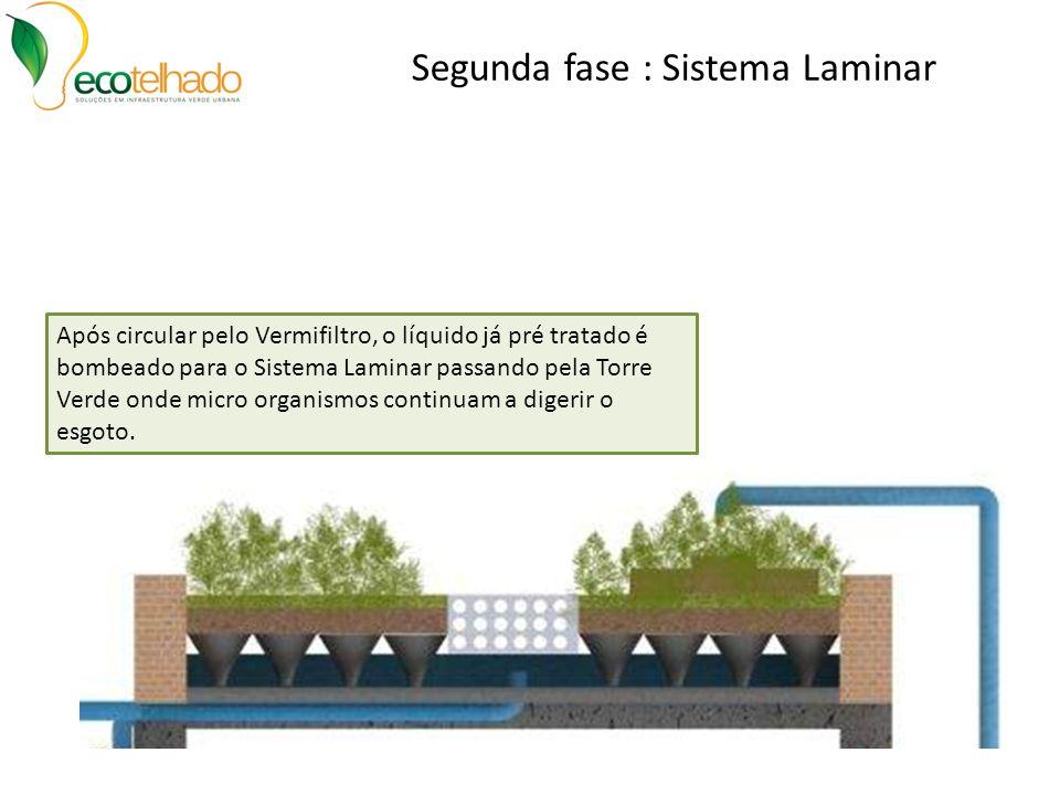 Segunda fase : Sistema Laminar Após circular pelo Vermifiltro, o líquido já pré tratado é bombeado para o Sistema Laminar passando pela Torre Verde on