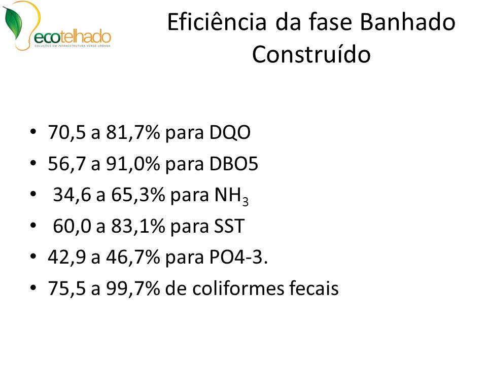 Eficiência da fase Banhado Construído 70,5 a 81,7% para DQO 56,7 a 91,0% para DBO5 34,6 a 65,3% para NH 3 60,0 a 83,1% para SST 42,9 a 46,7% para PO4-