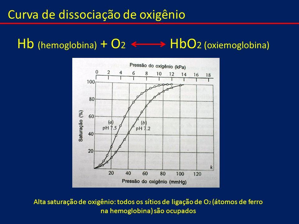 Curva de dissociação de oxigênio Hb (hemoglobina) + O 2 HbO 2 (oxiemoglobina) Alta saturação de oxigênio: todos os sítios de ligação de O 2 (átomos de