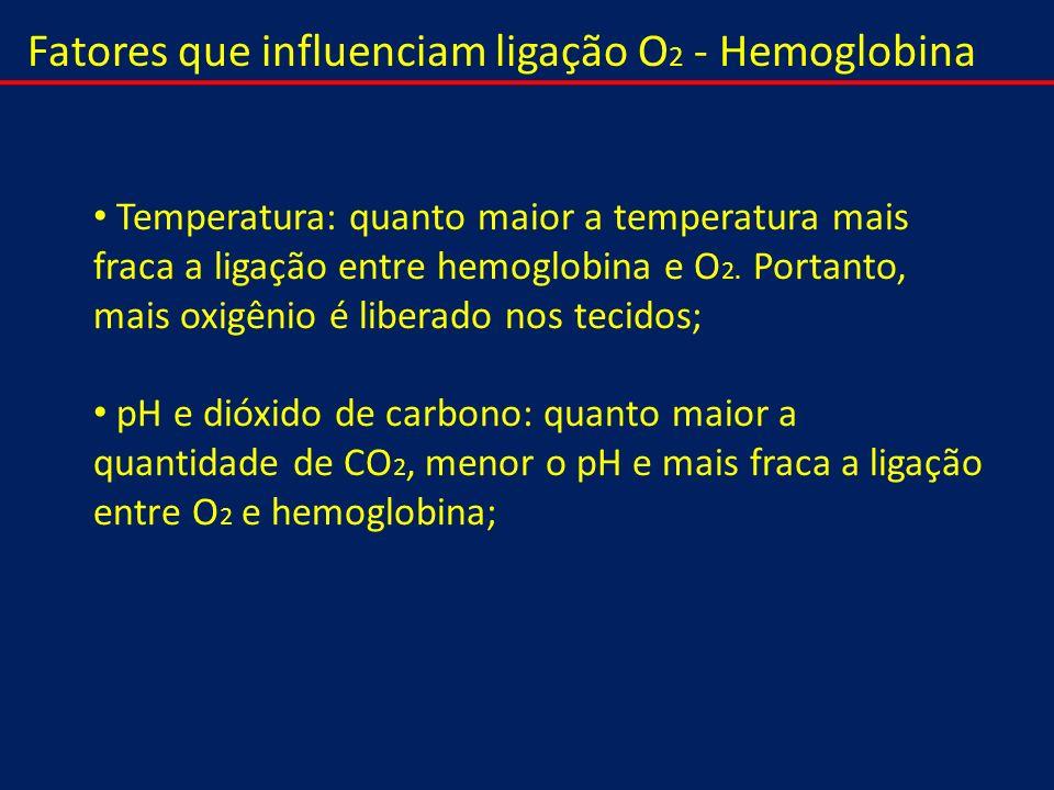 Fatores que influenciam ligação O 2 - Hemoglobina Temperatura: quanto maior a temperatura mais fraca a ligação entre hemoglobina e O 2. Portanto, mais