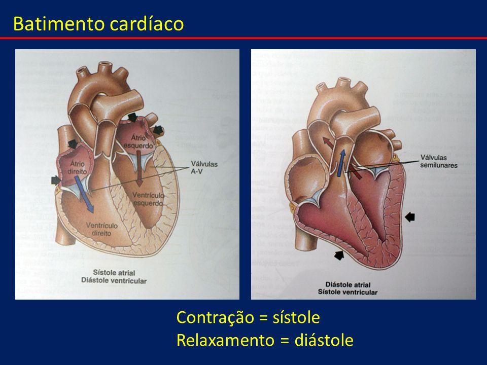 Batimento cardíaco Contração = sístole Relaxamento = diástole