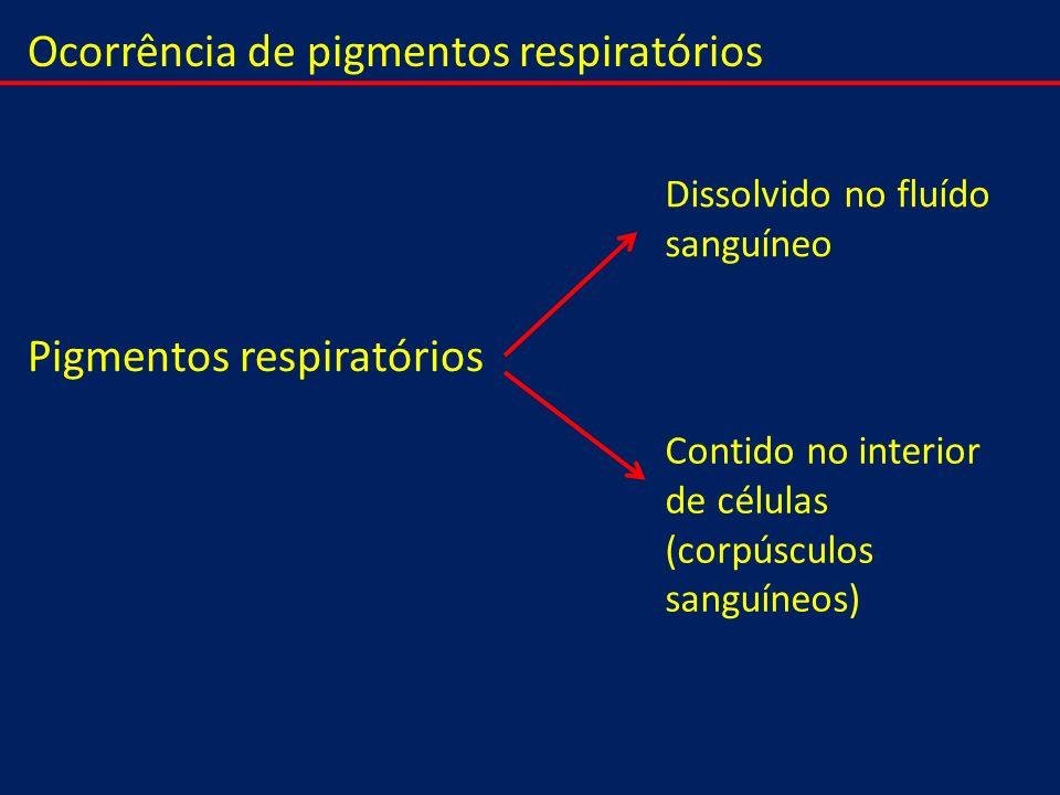 Pigmentos respiratórios Dissolvido no fluído sanguíneo Contido no interior de células (corpúsculos sanguíneos) Ocorrência de pigmentos respiratórios