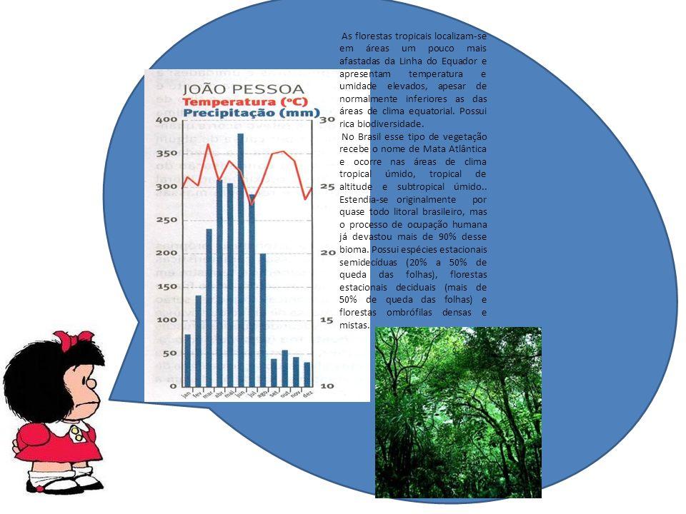 As florestas tropicais localizam-se em áreas um pouco mais afastadas da Linha do Equador e apresentam temperatura e umidade elevados, apesar de normalmente inferiores as das áreas de clima equatorial.