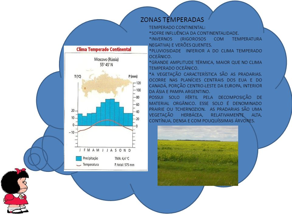 ZONAS TEMPERADAS TEMPERADO CONTINENTAL: *SOFRE INFLUÊNCIA DA CONTINENTALIDADE.