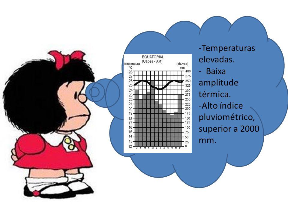 -Temperaturas elevadas. - Baixa amplitude térmica. -Alto índice pluviométrico, superior a 2000 mm.