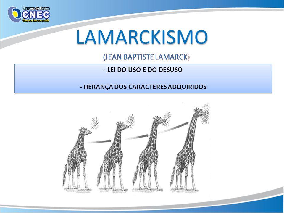 LAMARCKISMO - LEI DO USO E DO DESUSO - HERANÇA DOS CARACTERES ADQUIRIDOS - LEI DO USO E DO DESUSO - HERANÇA DOS CARACTERES ADQUIRIDOS