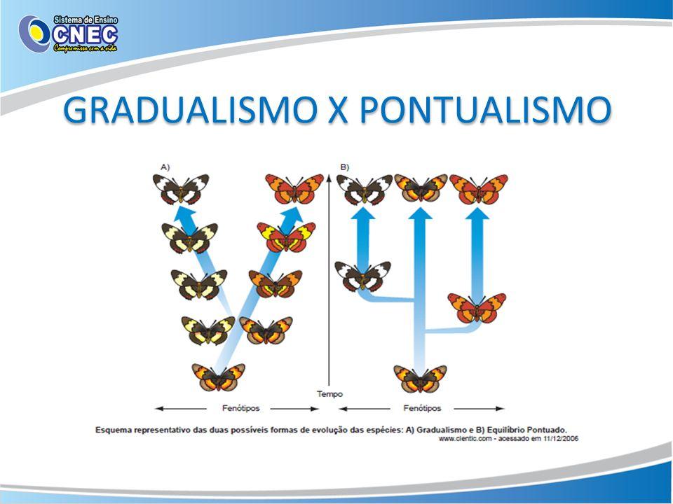 GRADUALISMO X PONTUALISMO