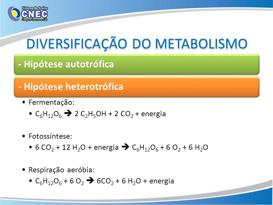 DIVERSIFICAÇÃO DO METABOLISMO - Hipótese autotrófica- Hipótese heterotrófica Fermentação: C 6 H 12 O 6 2 C 2 H 5 OH + 2 CO 2 + energia Fotossíntese: 6