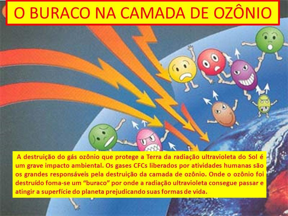 O BURACO NA CAMADA DE OZÔNIO A destruição do gás ozônio que protege a Terra da radiação ultravioleta do Sol é um grave impacto ambiental. Os gases CFC