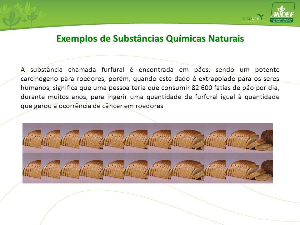 A substância chamada furfural é encontrada em pães, sendo um potente carcinógeno para roedores, porém, quando este dado é extrapolado para os seres hu