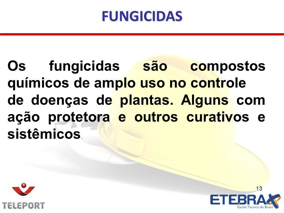 13 FUNGICIDAS Os fungicidas são compostos químicos de amplo uso no controle de doenças de plantas. Alguns com ação protetora e outros curativos e sist