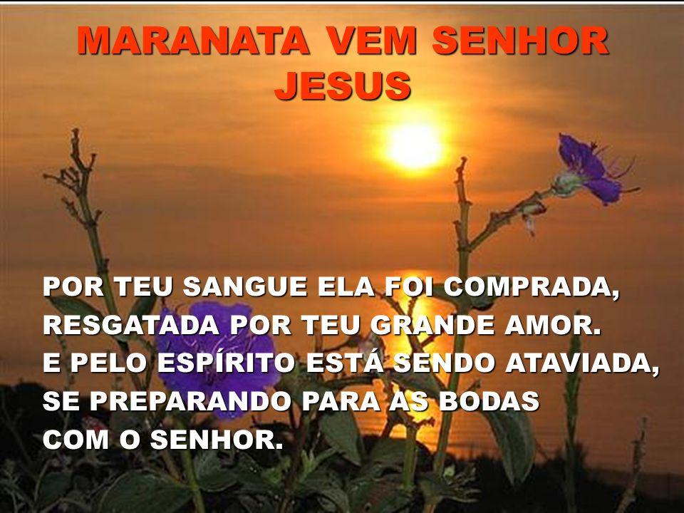 MARANATA VEM SENHOR JESUS POR TEU SANGUE ELA FOI COMPRADA, RESGATADA POR TEU GRANDE AMOR. E PELO ESPÍRITO ESTÁ SENDO ATAVIADA, SE PREPARANDO PARA AS B
