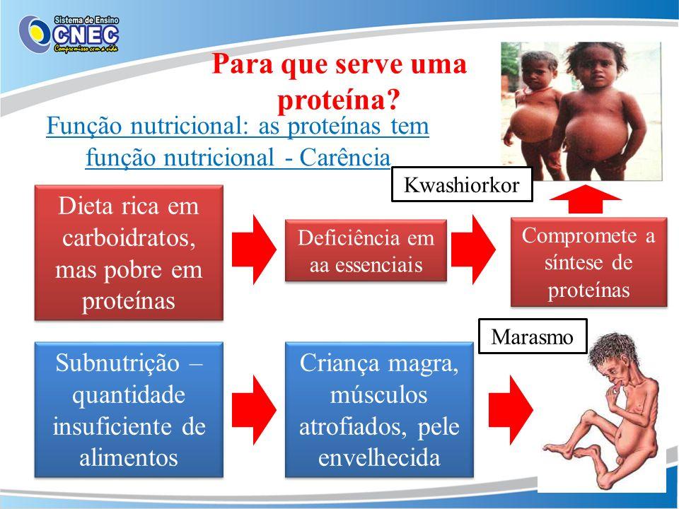 Função nutricional: as proteínas tem função nutricional - Carência Para que serve uma proteína? Dieta rica em carboidratos, mas pobre em proteínas Def