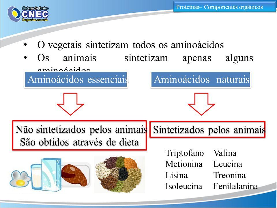 Proteínas– Componentes orgânicos O vegetais sintetizam todos os aminoácidos Os animais sintetizam apenas alguns aminoácidos Aminoácidos essenciais Ami