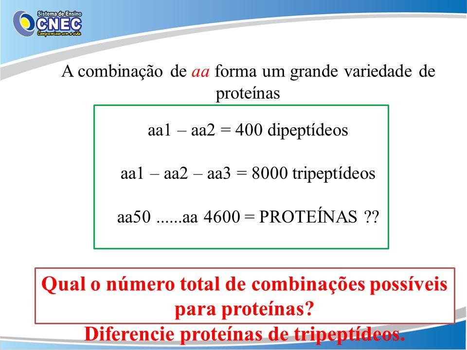 A combinação de aa forma um grande variedade de proteínas aa1 – aa2 = 400 dipeptídeos aa1 – aa2 – aa3 = 8000 tripeptídeos aa50......aa 4600 = PROTEÍNA