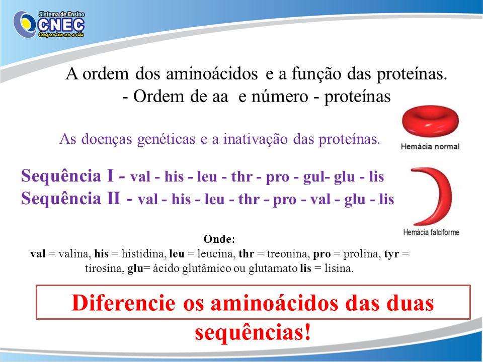 A ordem dos aminoácidos e a função das proteínas. - Ordem de aa e número - proteínas Diferencie os aminoácidos das duas sequências! As doenças genétic