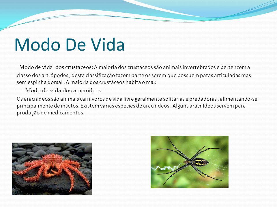 Perguntas O que diferencia os caranguejos e dos crustáceos.