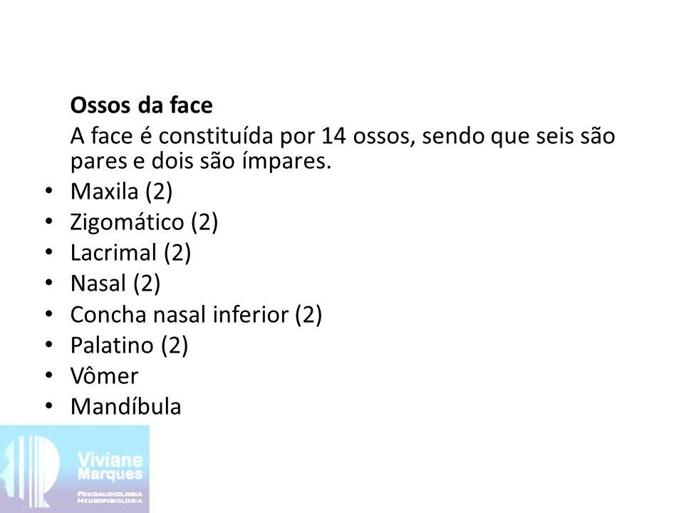 Ossos da face A face é constituída por 14 ossos, sendo que seis são pares e dois são ímpares.